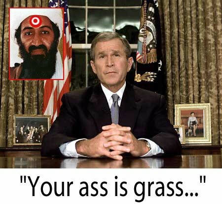 assisgrass.jpg